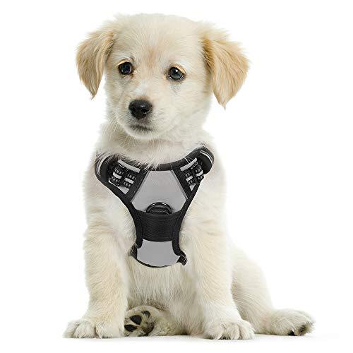 rabbitgoo No-Pull Hundegeschirr für kleine Hunde Welpengeschirr Einstellbar Weich Geschirr Sicher Kontrolle Brustgeschirr Gepolstert Grau S
