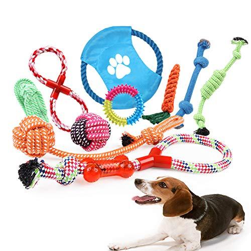 Hundespielzeug Set 10 Stück Welpen Hund Geflochten Seil Spielzeug Set Interaktive Spielzeug Kauspielzeug Baumwolle Zähne Reinigung für Kleine und Mittlere Hunde