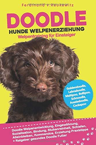 Doodle Hunde Welpenerziehung: Goldendoodle, Labradoodle, Maltipoo, Cockapoo & Co - Buch zum Doodle Welpentraining für Einsteiger - Entwicklung, Bindung, Stubenreinheit, Erziehung