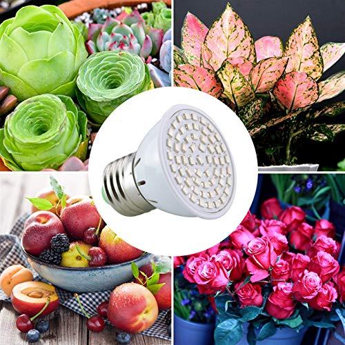 XINXI-YW Haustierheizung Pad AmmToo Full Spectrum LED wachsen Licht 60leds Spotlight-Lampen-Birnen-Blumen-Anlage Gewächshaus Hydroponiksystem 220V AC wachsen Box Reptilien- und Amphibien-Lebensraum